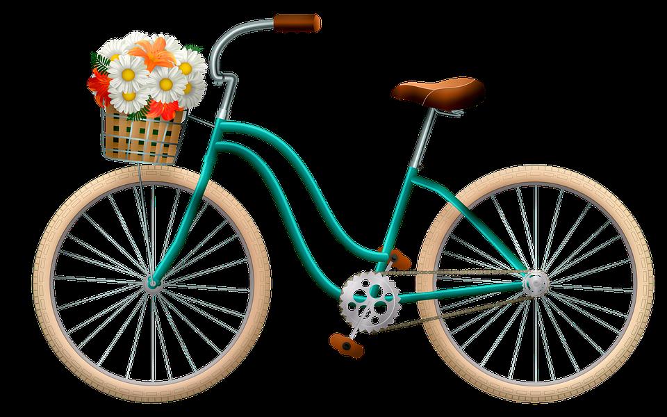 Cycle 5